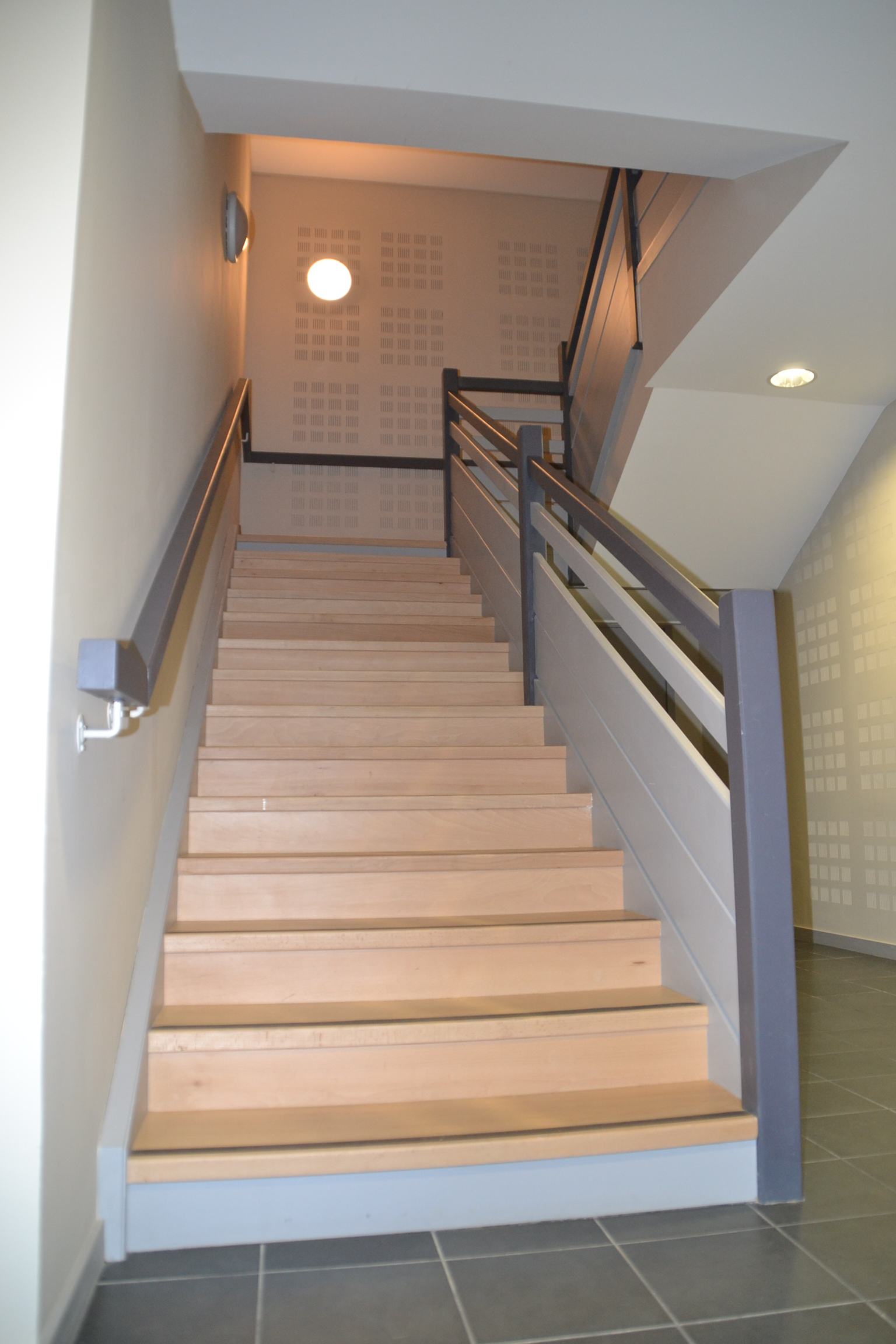 limon acm escalier partie communes